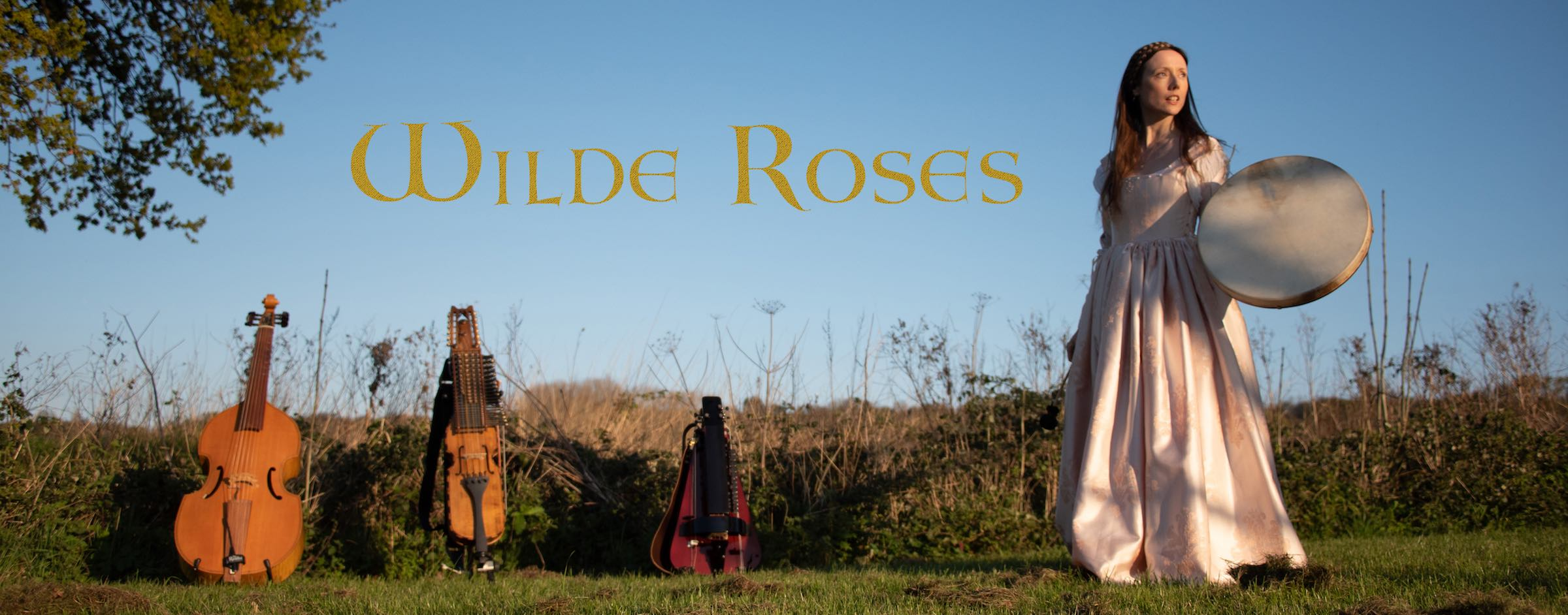 Wilde Roses with instruments
